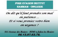 Pure evasion institut
